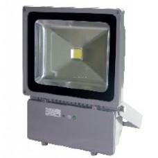 Прожектор LMP100 100W 8000LM 6500K