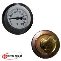 Термометр T63 0-120 °C, Ø63mm